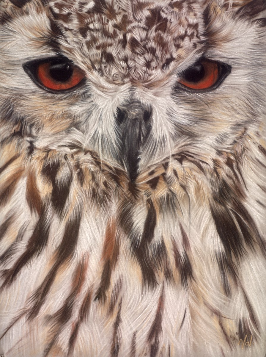Bengal Eagle Owl by valerie simms -  sized 12x16 inches. Available from Whitewall Galleries